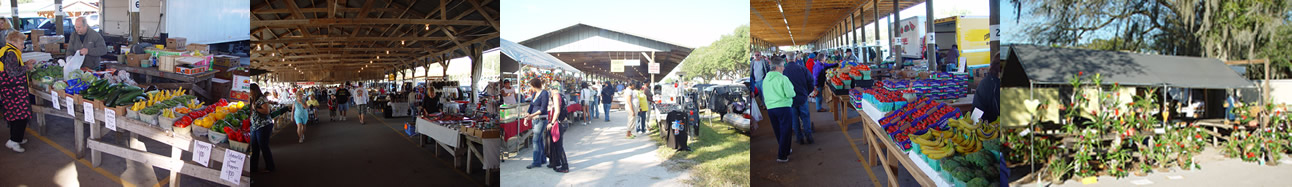 Sumter County Farmers Market, Webster, Florida